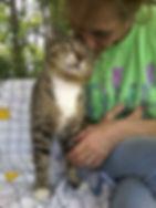 Thomas cat 4.jpg