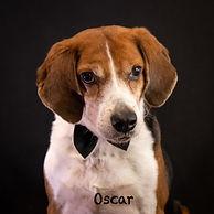 Oscar 3.2.jpg