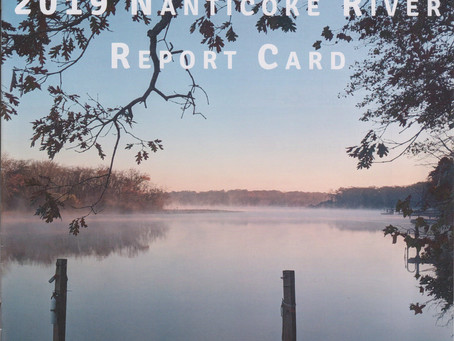 2019 Nanticoke River Report Card Video to be released.