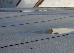Flat Roof - MM Dynamic