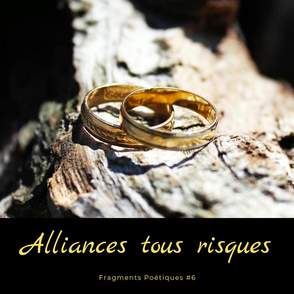 De superbes alliances en or sur un tronc d'arbre