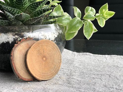 Mexican Cedar Coaster