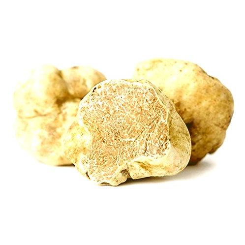 White Alba Truffles FRESH (size 4-12g.)/ Tuber Magnatum Pico Vitt.