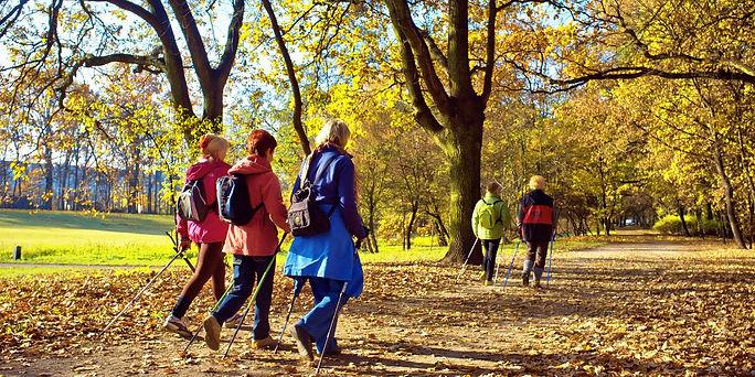 Efterårsgåtur 1.0.jpg