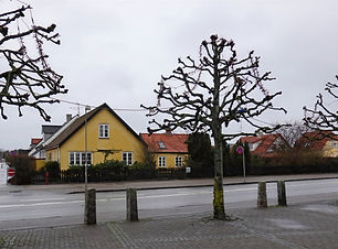Svend-Henriksen_edited_edited.jpg