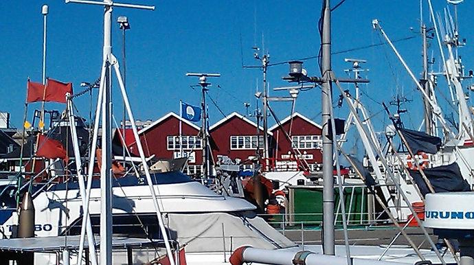 Gilleleje-Havn.jpg