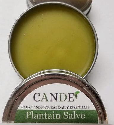 Hemp Oil / Plantain Salve