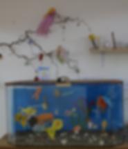 Kita Liputto Aquarium Räumlichkeiten Raum