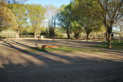 Practice Trail Course