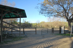 Back Outdoor Arena