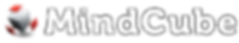 MindCube Logo_1st.png