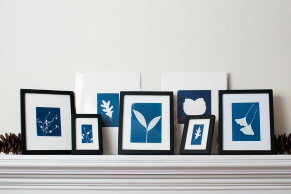 framed_group.jpg