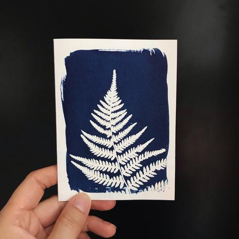 greeting-card-fern.jpg