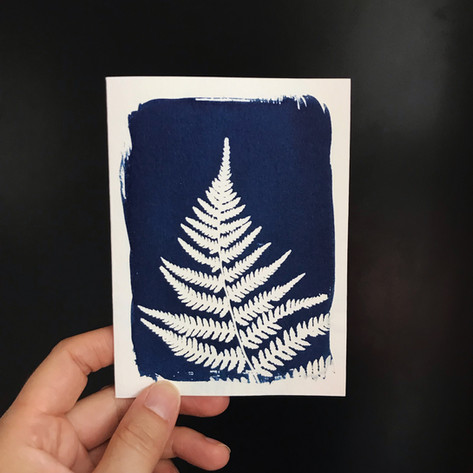 greeting-card-fern.jpg