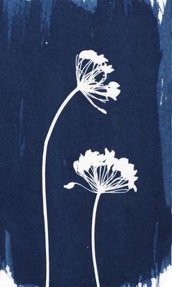 fennel-biz-card.jpg