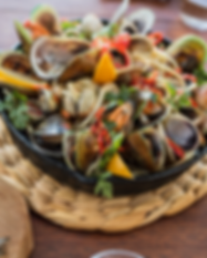 mussels and clams .png