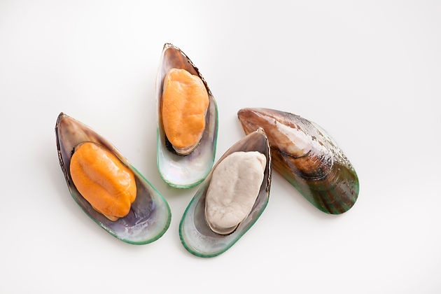 Greenshell Mussels showing mussel meat and shell