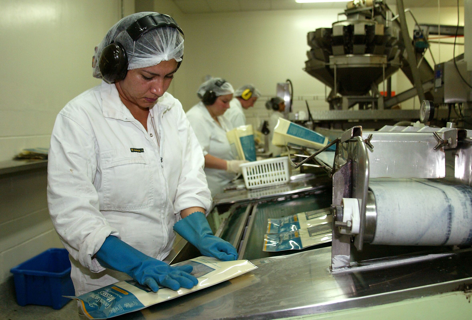 New Zealand Mussel Factory