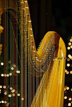 Elegant Harp.jpg