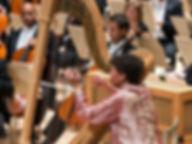 harpist-69fe391014d73d125f3619d2f1126886