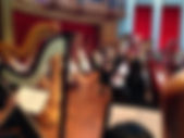 houston harp fest2.jpg
