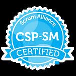 SAI_BadgeSizes_DigitalBadging_CSP-SM.png