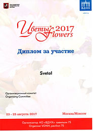 Диплом Svetol Цветы-2017.jpg