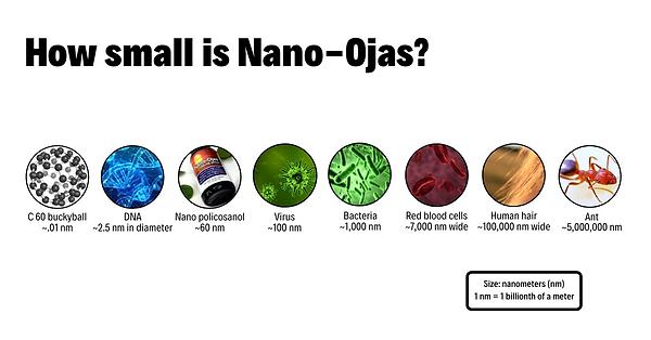 Nanosize.png