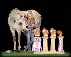 2016 WI State 4-H Horse Show
