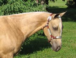 Ducan Oct 2006