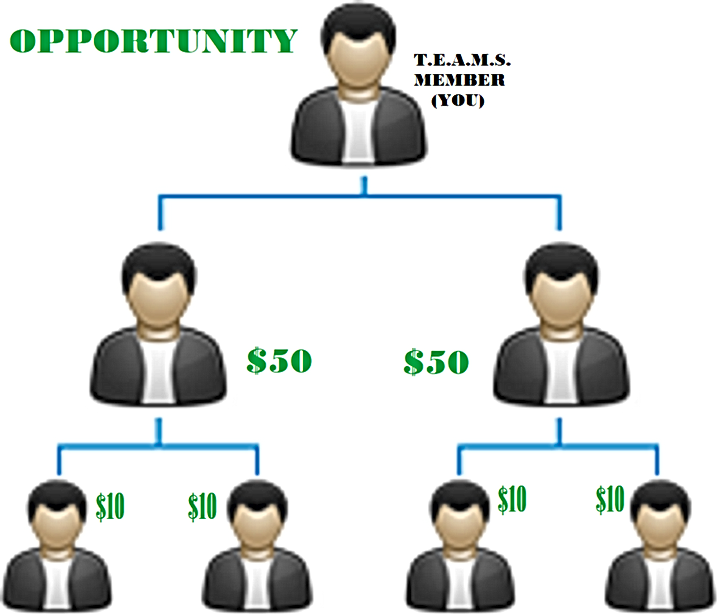 MLM-Binary-Plan-Structure.png
