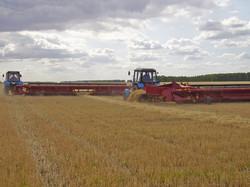 Жатки валковые зерновые ПАЛЕССЕ СТ5; СТ6; СТ7; СТ9,2; СТ10,7 2