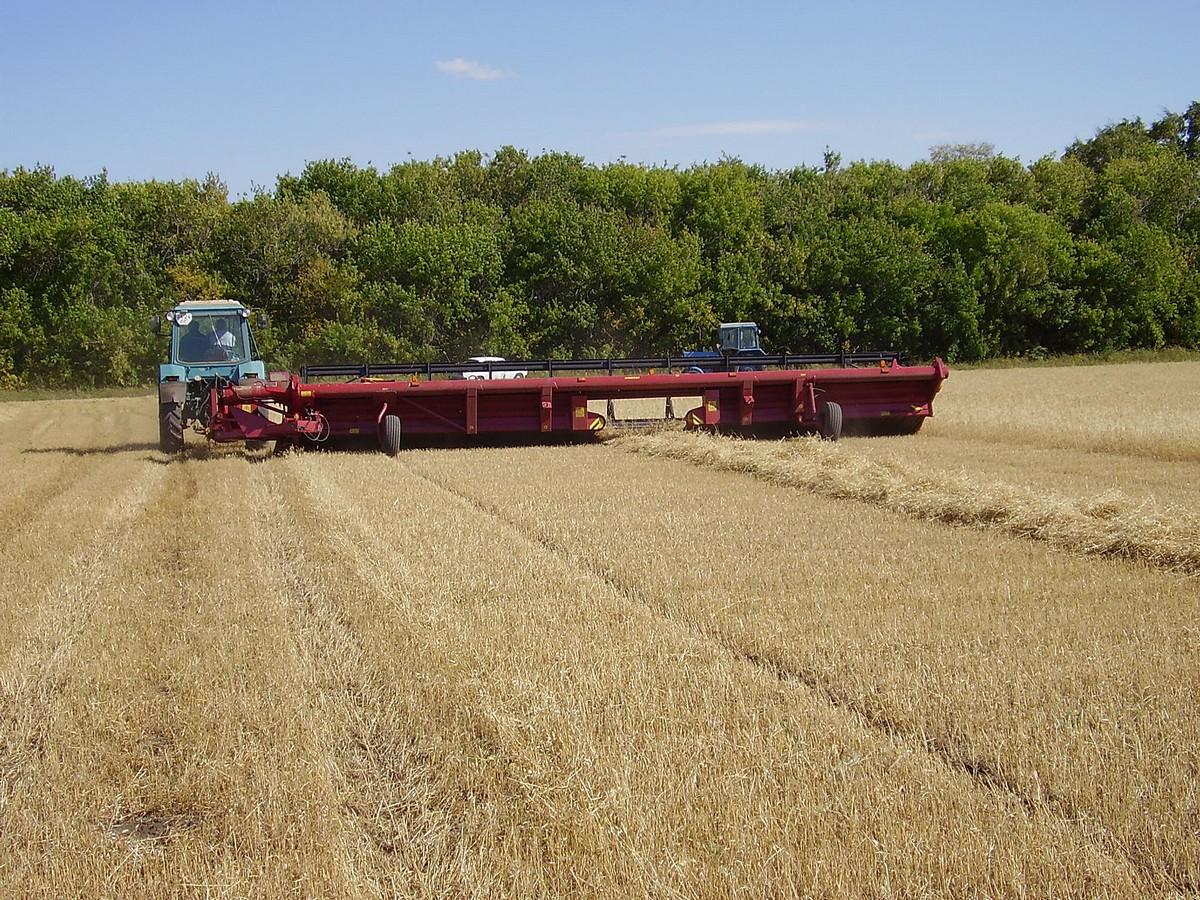 Жатки валковые зерновые ПАЛЕССЕ СТ5; СТ6; СТ7; СТ9,2; СТ10,7 3