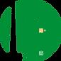 背景白(緑).png