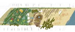 jp-landscape2 copia