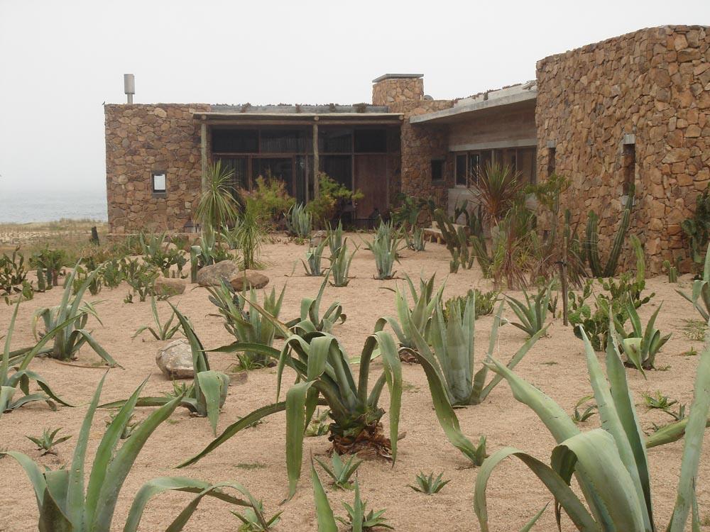 campocactus