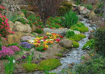 A rock garden, complete with running str