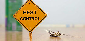 commercial-pest-control-services.jpg
