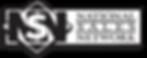 NSN Logo.png