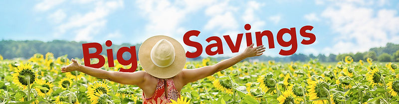 Big Savings.jpg