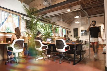 Manawa Coworking - Open Office