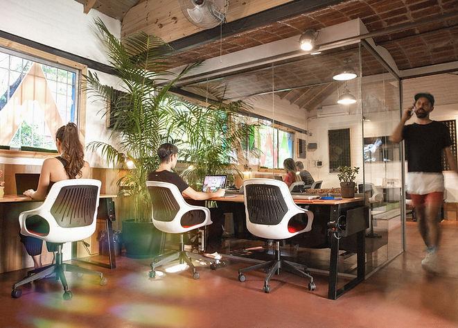 Manawa Coworking - Open Office.jpg