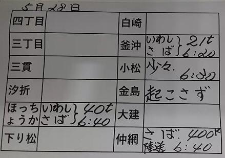 本日の釜石魚市場の水揚げ情報更新!(5月28日)