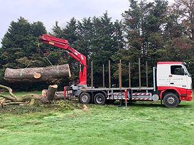 Cedar butt c.6 tonne.jpg
