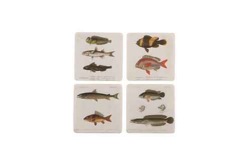Fish Tile Coasters x4