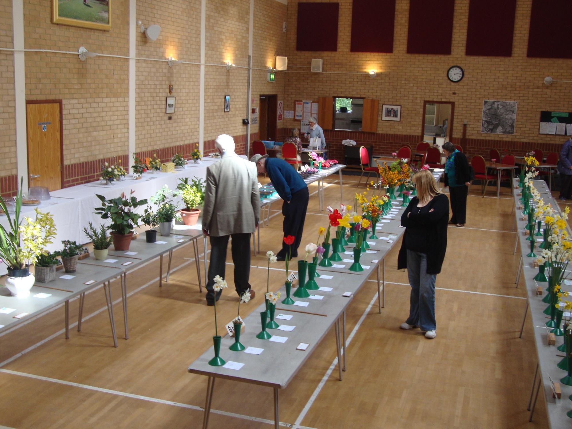 Village Spring Show 2015