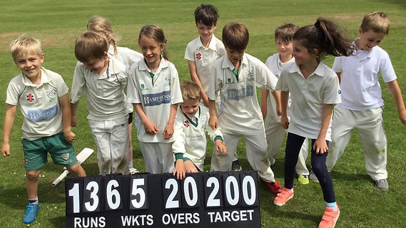 Chiddingfold Cricket Club - Youth