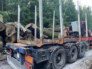 timber drag.jpg