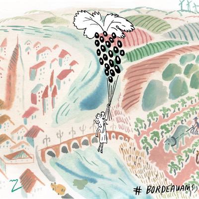 Bordeaux aerial Resized.jpg
