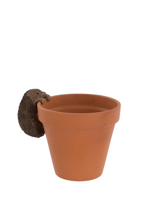 Hedgehog Animal Pot Hanger